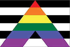 LGBTQ Gay Straight Alliance Pride Flag With Grommets 3' X 5'