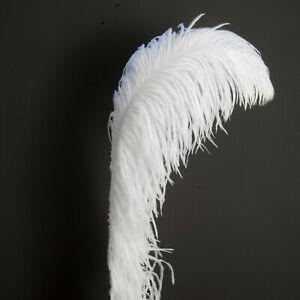 1 Plume d'autruche longueur 60-70 cm décoration costume chapeau bijoux DIY