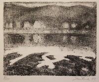 "Lithografie von Wolfgang Kühne ""Elblandschaft"" 1992 Druckgrafik Kunst sf"