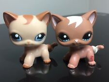 2 Littlest Pet Shop Cats #1024 #1170 Tan Brown Swril Short Hair Blue Eyes Cute