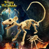 Halloween Skeleton Cat Dog Mouse Prop Animal Bones Party Decoration Horror