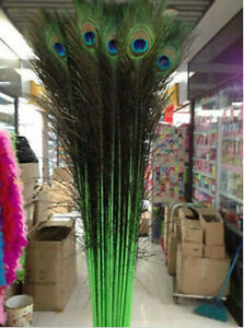 Wholesale 10-200pcs Perfect Peacock Feather Eyes 28-32 Inches /70-80 Cm