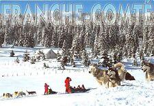 BF38644 franche comte haski   chien dog  animal animaux