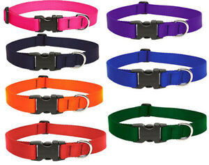 "LUPINE DOG COLLAR 3/4"" red black pink orange purple etc"