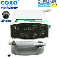 COXO Dental Electric Brushless LED Micro Motor C PUMA 2 Hole Handpiece NSK