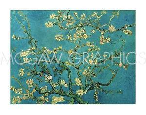 "VAN GOGH VINCENT - ALMOND BLOSSOM, 1890 - ART PRINT POSTER 11"" X 14"" (401)"
