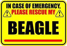 In Case Of Emergency Rescue My Beagle Sticker