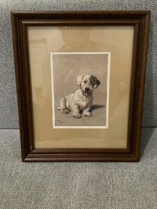 Antique Cecil Aldin A Sealyham Terrier Dog Woggles Framed Lithograph Print