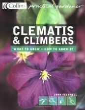 Klematis i liany, Excellent, Books, mon0000163067