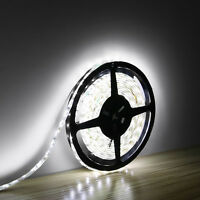 New Waterproof 300 LEDs Cool White DC 12V 5M 3528 SMD Bright LED Strip Lights