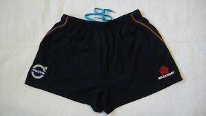 NSW Waratahs shorts