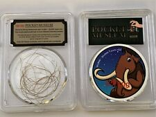 Pocket Museum - Genuine Wooly Mammoth Hair 10,000 - 50,000 Years old Collection