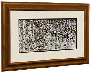 Bev Doolittle - Woodland Encounter - Matted & Framed Open edition Art Print
