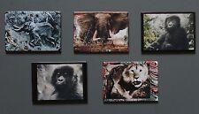 Peter Beard Fridge Photo Magnet Complete Set, Africa Elephant Lion Gorilla Tsavo