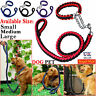Strong Dog Pet Lead Leash Splitter Coupler Dag Chain Collar Harness with Clip UK