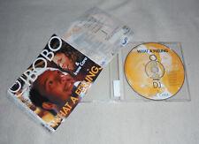 Single CD DJ Bobo & IRENE CARA-What a feeling 2000 5. TRACKS SINGLE 176 3