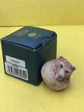 Harmony Kingdom Candy Roly Poly Bear Treasure Box Figurine Cdn Exclusive 2000