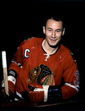 Pierre Pilote Chicago Black Hawks 8x10 Photo