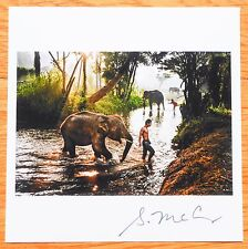 "SIGNED - STEVE MCCURRY ELEPHANTS IN THAILAND LTD 6"" x 6"" MAGNUM ARCHIVAL PRINT"