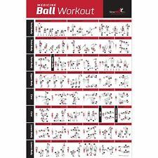 NewMe Fitness Medicine Ball Workout Poster Laminated :: Illustrated Guide wit...