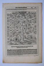 GENEALOGIE Famille BOUTEILLIER Bois Grave ARBRE GENEALOGIQUE Chasseneux 1552