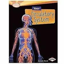Your Circulatory System (Searchlight Books: How Does Your Body Work?) -ExLibrary