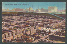 Ca 1945 PPC* Union Stock Yard W/Cows Chicago IL Mint