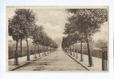 Postcard Park Avenue Nelson Haslingden Colne Barrowford Brierfield