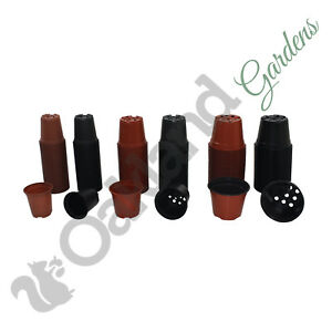 Plastic Plant Pots 9cm / 10.5cm / 13cm ( 1 LIitre ) Thermoformed Tall Full Size