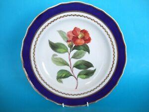 A Derby Porcelain Botanical Subject Plate. c.1797-1800.