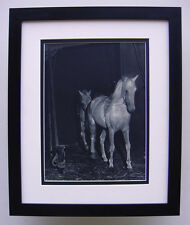 """Stunning 1930s Brassai Antique Photogravure """"Inside the Horse Stable"""" FRAMED COA"""