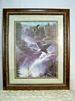 Two Eagles Flying over Waterfall in Dense Forest with Sunlight through the Trees