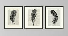 Set of 3 Feather Art Prints  Antique Book page Art Print  Dictionary Page Art