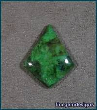 fgd- Top Parrot WIng Parrotwing Gem Cabochon!!
