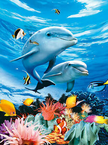 DOLPHINS AND MARINE LIFE - 3D LENTICULAR DOLPHIN PICTURE 300mm x 400mm (NEW)