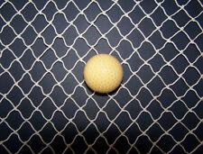 10' X 16' Golf Impact Batting Hockey Lacrosse Nylon Netting (3/4) # 15