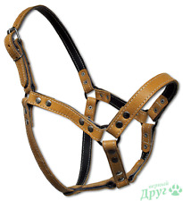 Leather Horse Collar Pony Harness Equitation Bridle Halter Driving Equestrian