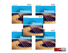 DADDARIO EJ16 FIVE SETS Phosphor Bronze Light Acoustic Strings 12-53 EJ-16