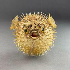 Petit Poisson lune naturalisé - Fugu - poisson globe - taxidermie