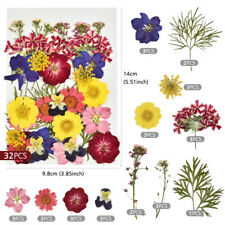 Preal Dried Flowers for Resin Molds,Small Pressed Flowers for Resin Suppl Diy