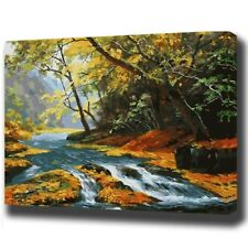 """Paint By Number Kit Trees Forest Stream Nature DIY Picture 40x50cm 16x20"""" Canvas"""