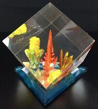 Saltwater Fish Paperweight Decor - Cubed Saltwater Motif - Saltwater Fish Coral