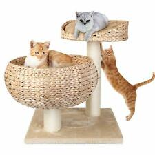Pedy Cat Tree House 2 Level Cat Condo Furniture Sisal Kitten Tower Scratch Post
