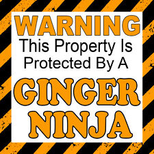 Warning This Property Is Protected by a Ginger Ninja Car Door Window Sticker