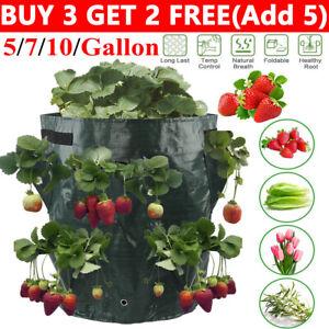 Plant Grow Bag Potato Strawberry Vegetable Plant Bags Patio Home Garden Planter