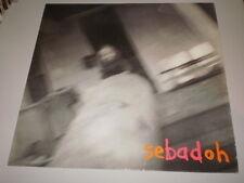 SEBADOH - ROCKING THE FOREST - TWENTY RECORDINGS - MADE IN UK - 1992 - LP -