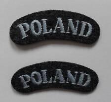 POLISH AIR FORCE BADGES. POLISH AIR FORCE SHOULDER TITLES ( PAIR ).