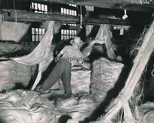 MANILLE c. 1950 - Manufacture de Cordes Philippines - DIV342