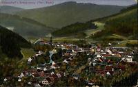 Sitzendorf bei Schwarzburg Thüringer Wald Thüringen AK ~1910 Gesamtansicht Wald