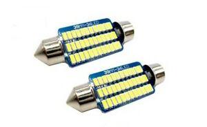 Ampoule C5W 39mm LED Blanc 6500K Canbus pour lampe plaque d'immatriculation